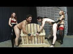 Brutal Butt Fucking