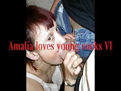 Amalia loves young cocks VI, a compilation