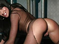 Lolly - Kinky Fishnets