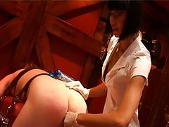 Anal Inspection