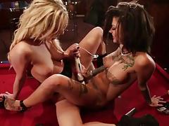 Strapon Lesbian between two gorgeous Tigers. B & B