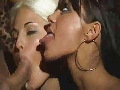 elena grimaldi cumshot compilation